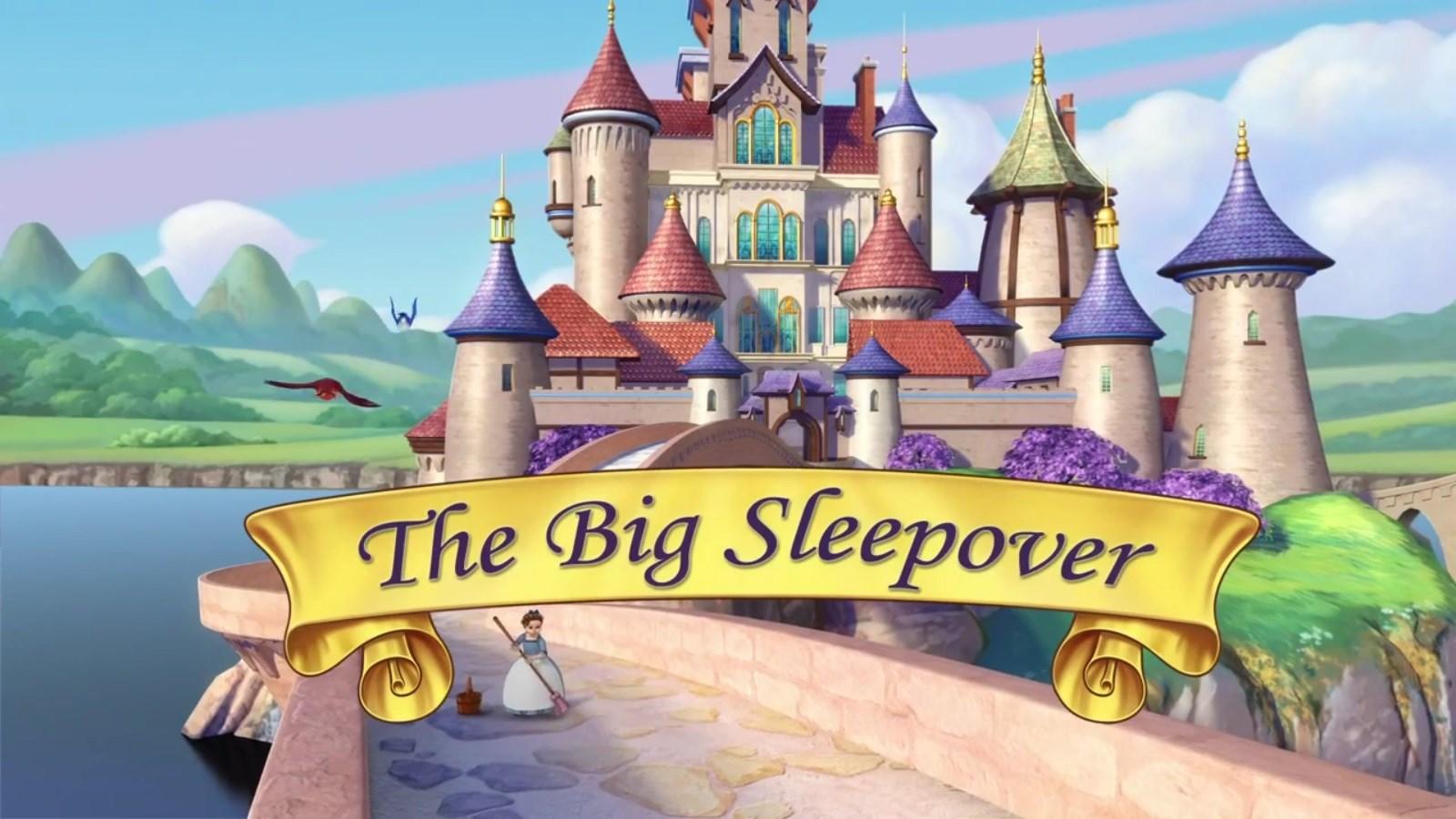 Disney Sleep Over- All Welcome